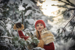Beautiful woman in red with brown fur cape enjoying the winter scenery in forest. Blonde girl posing under snow-covered branches Stock Photo