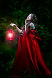 Beautiful woman with red cloak and lantern in the woods Stock Images