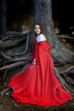 Beautiful woman with red cloak. Posing in the woods stock images