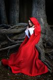 Beautiful woman with red cloak. Sitting in the woods stock image