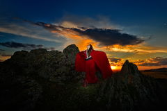 Beautiful woman with red cloak in the sunset light Royalty Free Stock Photo