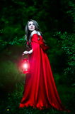 Beautiful woman with red cloak in the woods. Beautiful woman with red cloak and lantern in the woods royalty free stock image