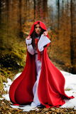 Beautiful woman with red cloak  in the woods Royalty Free Stock Photo
