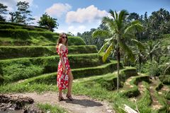 Beautiful young woman smile in red dress among green rice terraces in sunny day.Travel.Tourism.Holiday. Beautiful woman in red dress. Rice terraces royalty free stock images