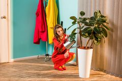 Beautiful woman in red dress squatting and watering plant with watering can. At home stock photography