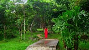 Beautiful Woman in Red Dress Walking in Tropical Garden.  stock video