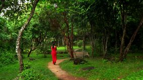 Beautiful Woman in Red Dress Walking in Tropical Garden. The woman in a long red dress walks in the rainforest. High. On this video you can see as the woman in a stock video