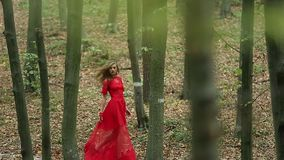 Beautiful Woman Walking Through Green Forest stock video