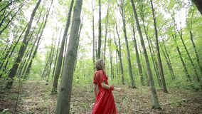 Beautiful Woman Walking Through Green Forest stock footage