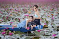 Beautiful woman with the red lotus sea Royalty Free Stock Photography