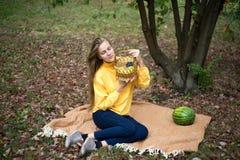 Girl autumn picnic stock image