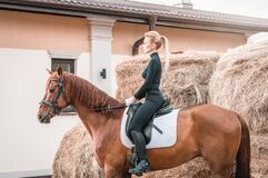 Free Beautiful Woman Rides A Horse. Equestrian Sport Concept Royalty Free Stock Image - 216068916
