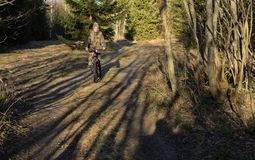 Beautiful woman  riding on bicycle on sunset forest Stock Photo