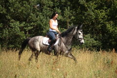 Beautiful woman riding gray horse in the forest. Beautiful woman riding gray horse near the forest Royalty Free Stock Photography