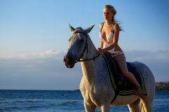 Beautiful woman riding a horse on the sea background, entertainment concept