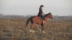 Beautiful woman riding horse at sunrise field. Young cowgirl at brown horse stock footage