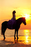 Beautiful woman riding a horse at sunset on the beach. Young gir. Beautiful woman riding a horse at sunset on the beach. Young beauty girl with a horse in the Royalty Free Stock Images