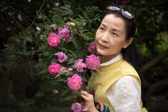 Beautiful woman in rose garden stock photos