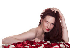 Beautiful woman and roses petals Stock Images