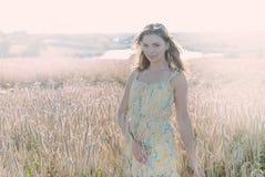 Beautiful woman in the Rye Stock Image