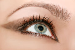 Beautiful woman's eye Royalty Free Stock Photography