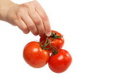 Beautiful woman's hand holds a fresh tomato. Royalty Free Stock Image