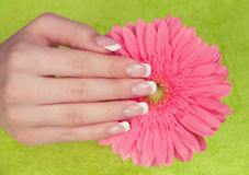 Beautiful woman's hand and nails with french manicure Stock Photos