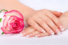 Beautiful woman's hand with perfect french manicure near Royalty Free Stock Photo