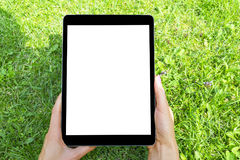 Beautiful woman`s hand using tablet computer, smart phone at green grass. Tablet computer white screen.Blank empty screen, space Royalty Free Stock Photography