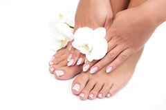 Beautiful woman's hands and legs Royalty Free Stock Photo
