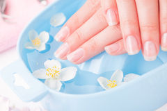 Beautiful woman's hands with manicure in bowl of water Royalty Free Stock Photos