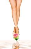 Beautiful woman's legs Royalty Free Stock Image