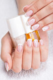 Beautiful woman's nails with french manicure Stock Photos