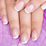 Beautiful woman's nails with french manicure Stock Images