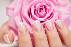 Beautiful woman's nails with french manicure and rose. Beautiful woman's nails with beautiful french manicure and pink rose stock image