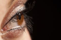 Beautiful woman`s open brown eye Stock Images