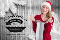 Beautiful woman in santa hat holding shopping bag Stock Photos