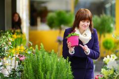 Beautiful woman selecting flowers at flower market Royalty Free Stock Photography