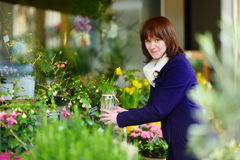 Beautiful woman selecting flowers at flower market Stock Photography