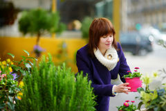 Beautiful woman selecting flowers at flower market Stock Images