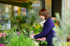 Beautiful woman selecting flowers at flower market Stock Photos
