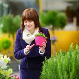 Beautiful woman selecting flowers at flower market Stock Image