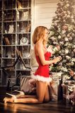 Beautiful woman in a sexy Santa Claus costume decorate the Christmas tree Royalty Free Stock Images
