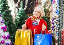 Beautiful Woman With Shopping Bags In Christmas Stock Images