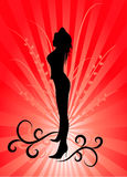 Beautiful woman silhouette Stock Photos