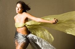 Beautiful woman in silk Stock Image