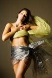 Beautiful woman in silk Stock Photos