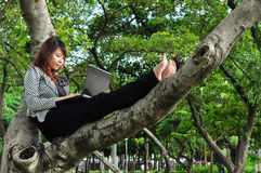 Beautiful woman sit on the tree and playing laptop Stock Photo