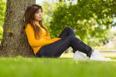 Beautiful woman sitting against tree in park Stock Images