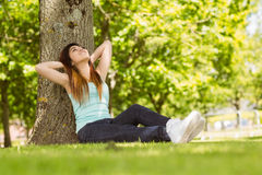 Beautiful woman sitting against tree in park Royalty Free Stock Photo